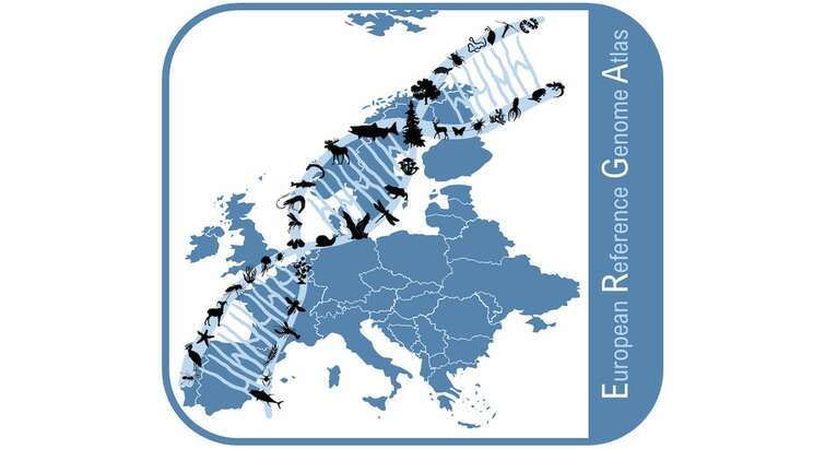 European Reference Genome Atlas
